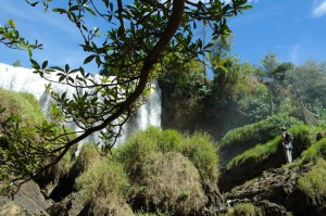 Elephant Falls-the big bumps in front of the cascade were thought to look like elephant's backs.
