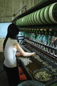 A silk worker sorts through the cocoons in boiling water and hooks the ends of the silk thread to the spinners.
