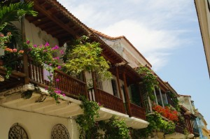 SAM_7157-buildings with flowers